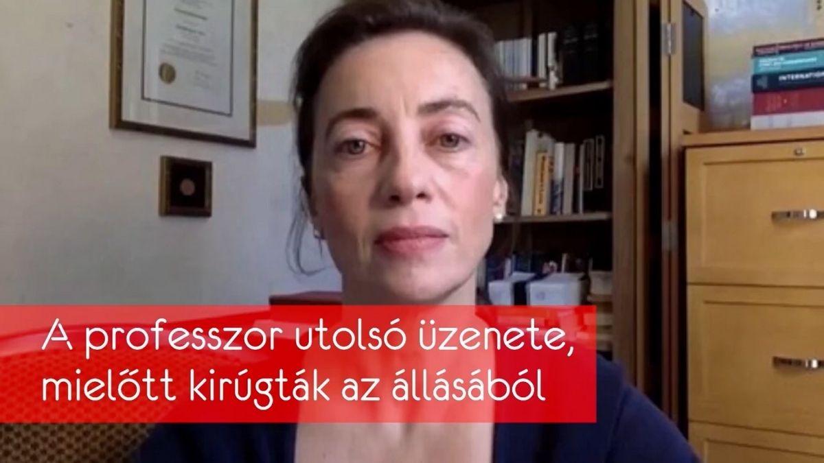 A PROFESSZOR UTOLSÓ ÜZENETE, MIELŐTT KIRÚGTÁK AZ ÁLLÁSÁBÓL